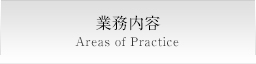 業務内容 Areas of Practice
